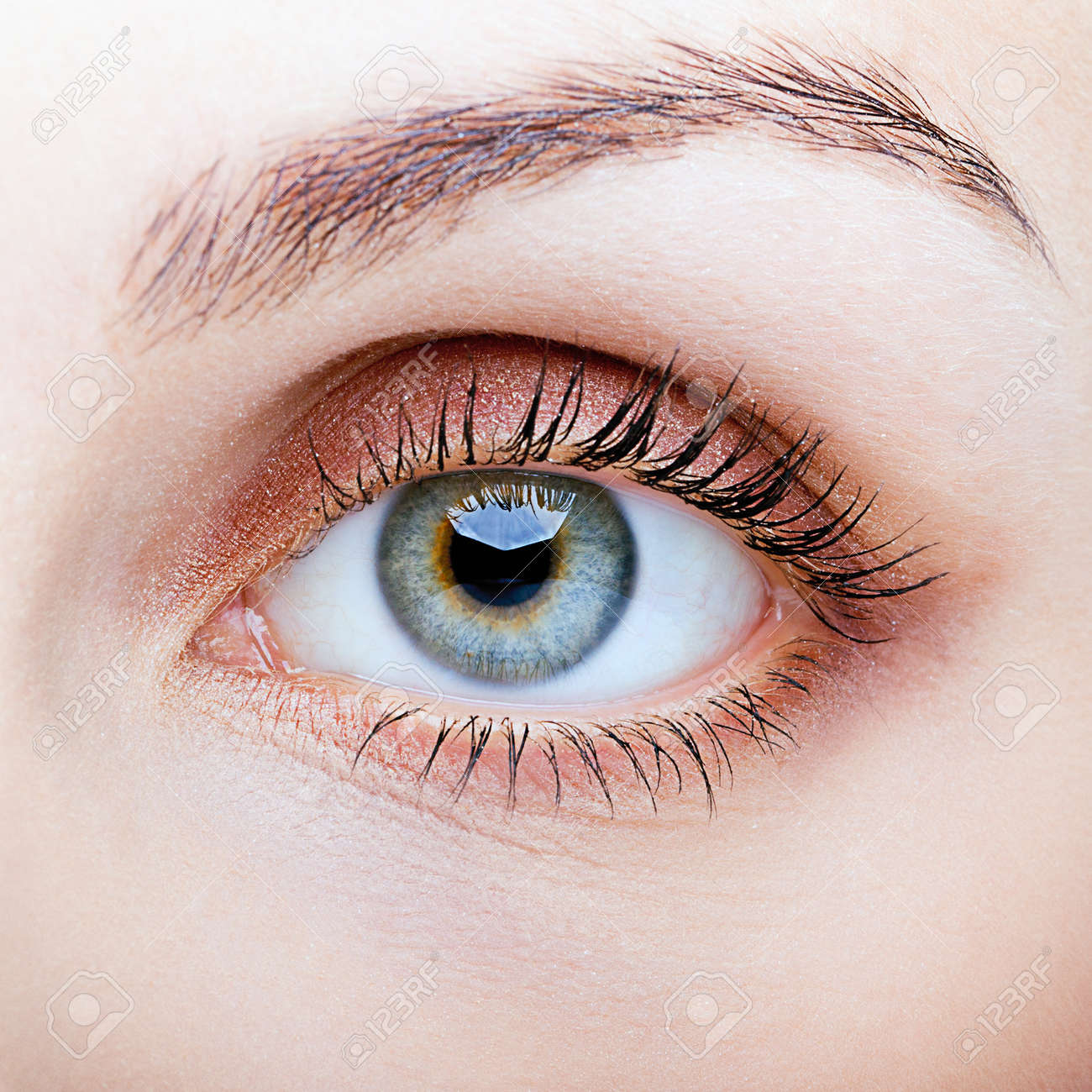 Close-up shot of female face with eye makeup - 43143438