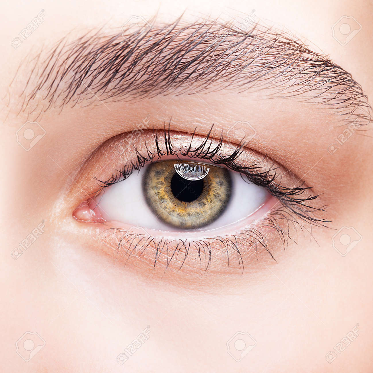 Closeup Shot Of Hazel Female Eye Makeup Stock Photo Picture And