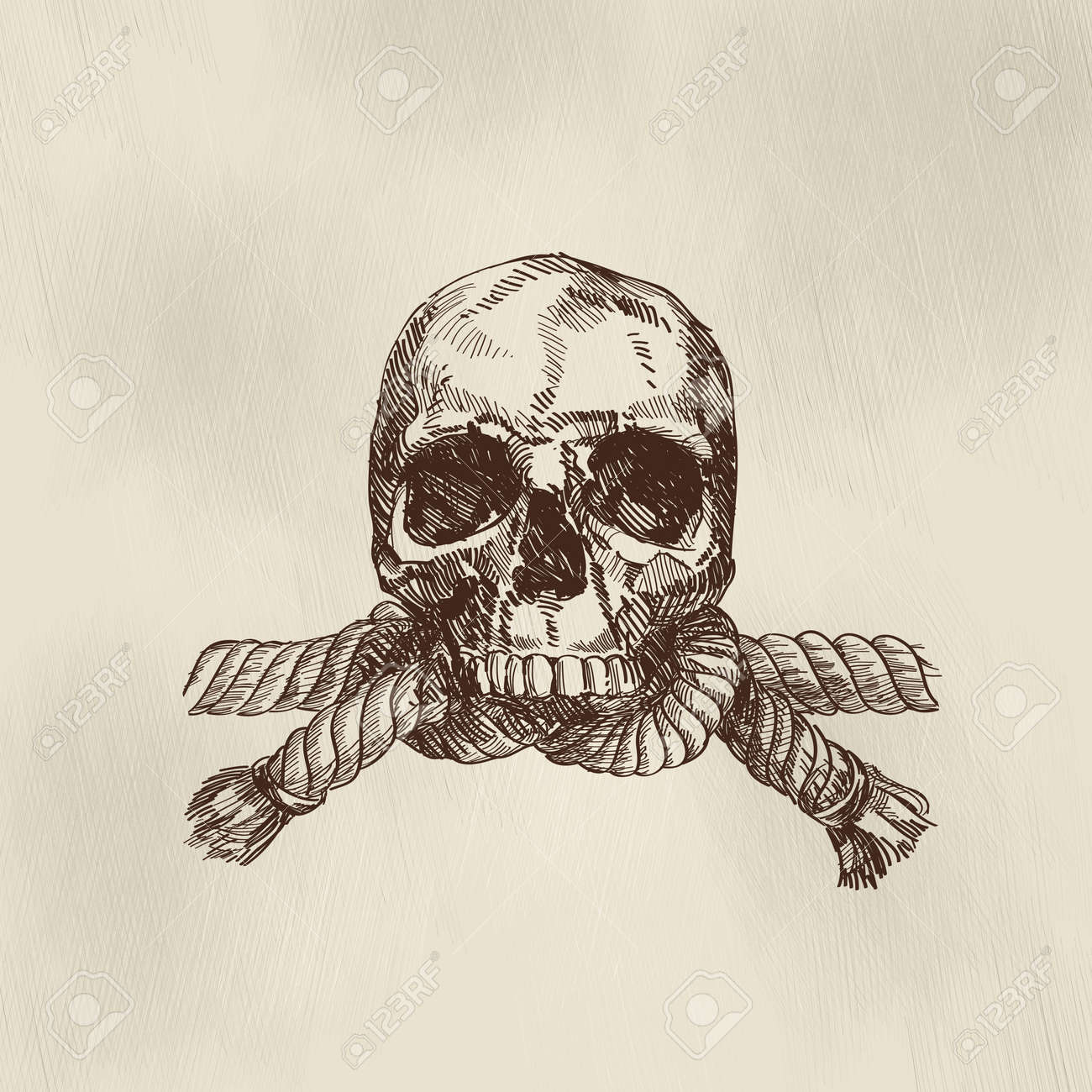 jolly roger Stock Vector - 14336125
