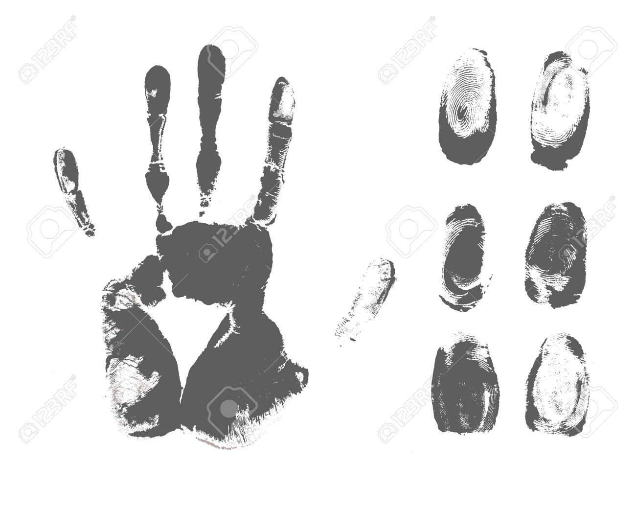 fingerprint Stock Vector - 16527128