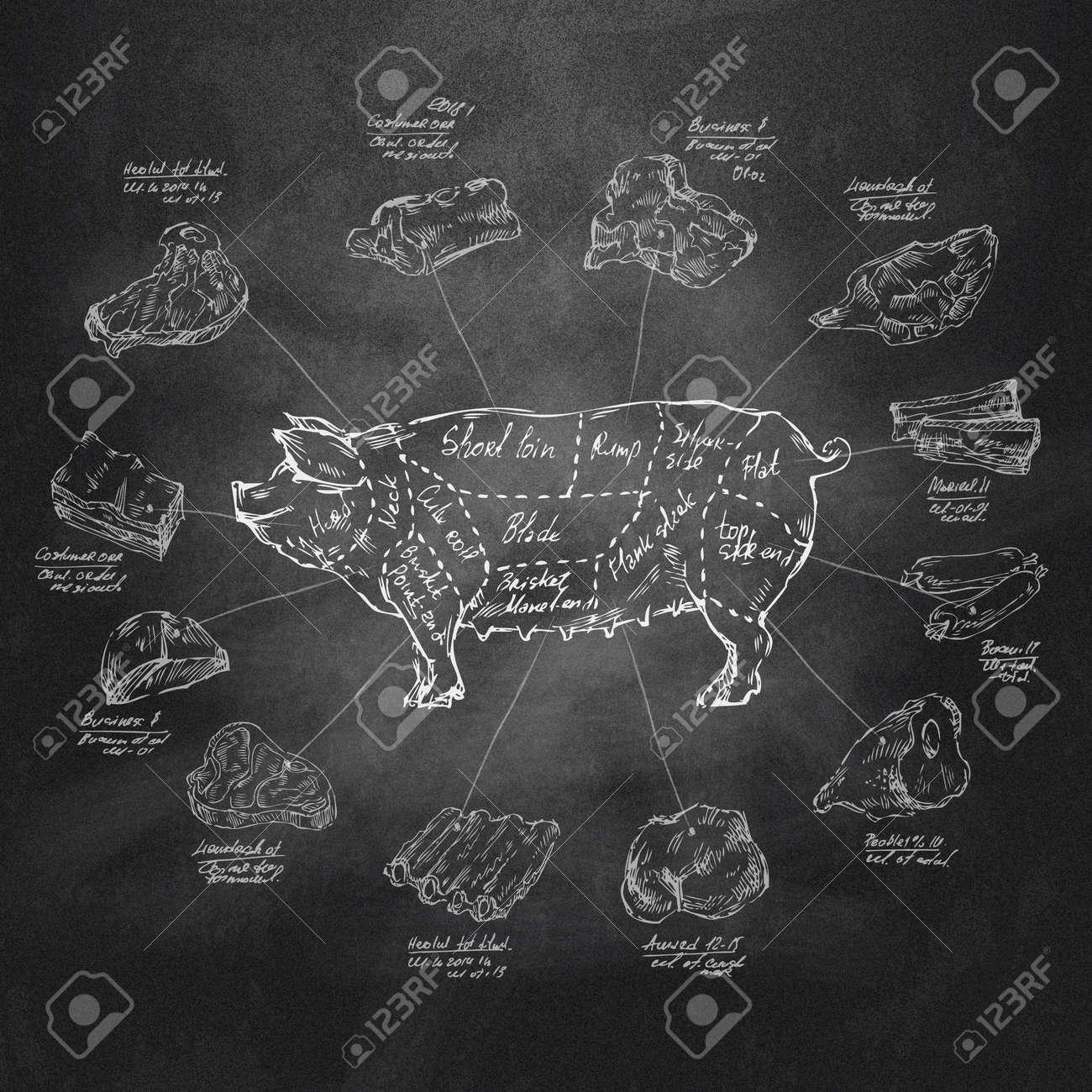 Pig Vector format - 29293595