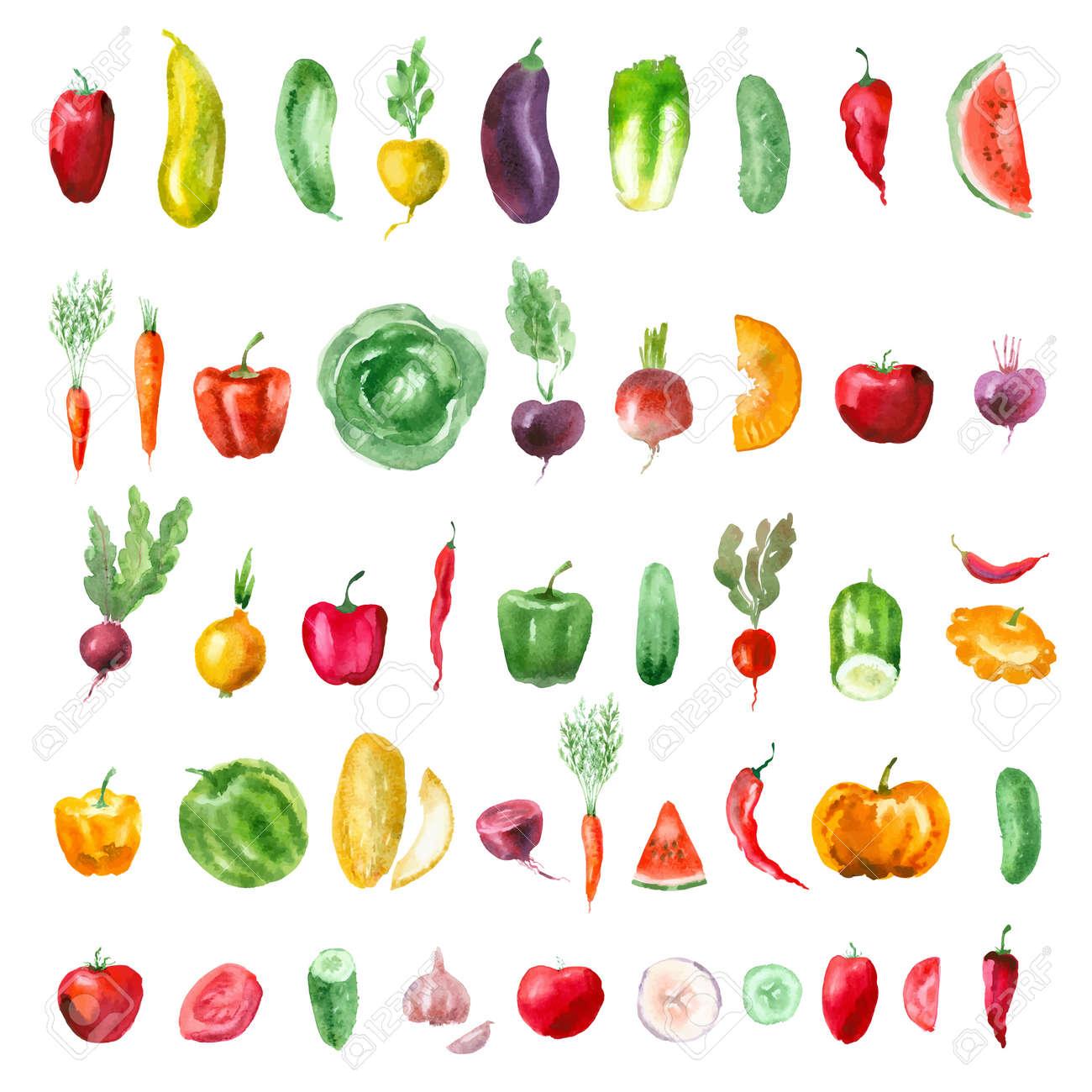 Vegetables. Vector format - 31451859