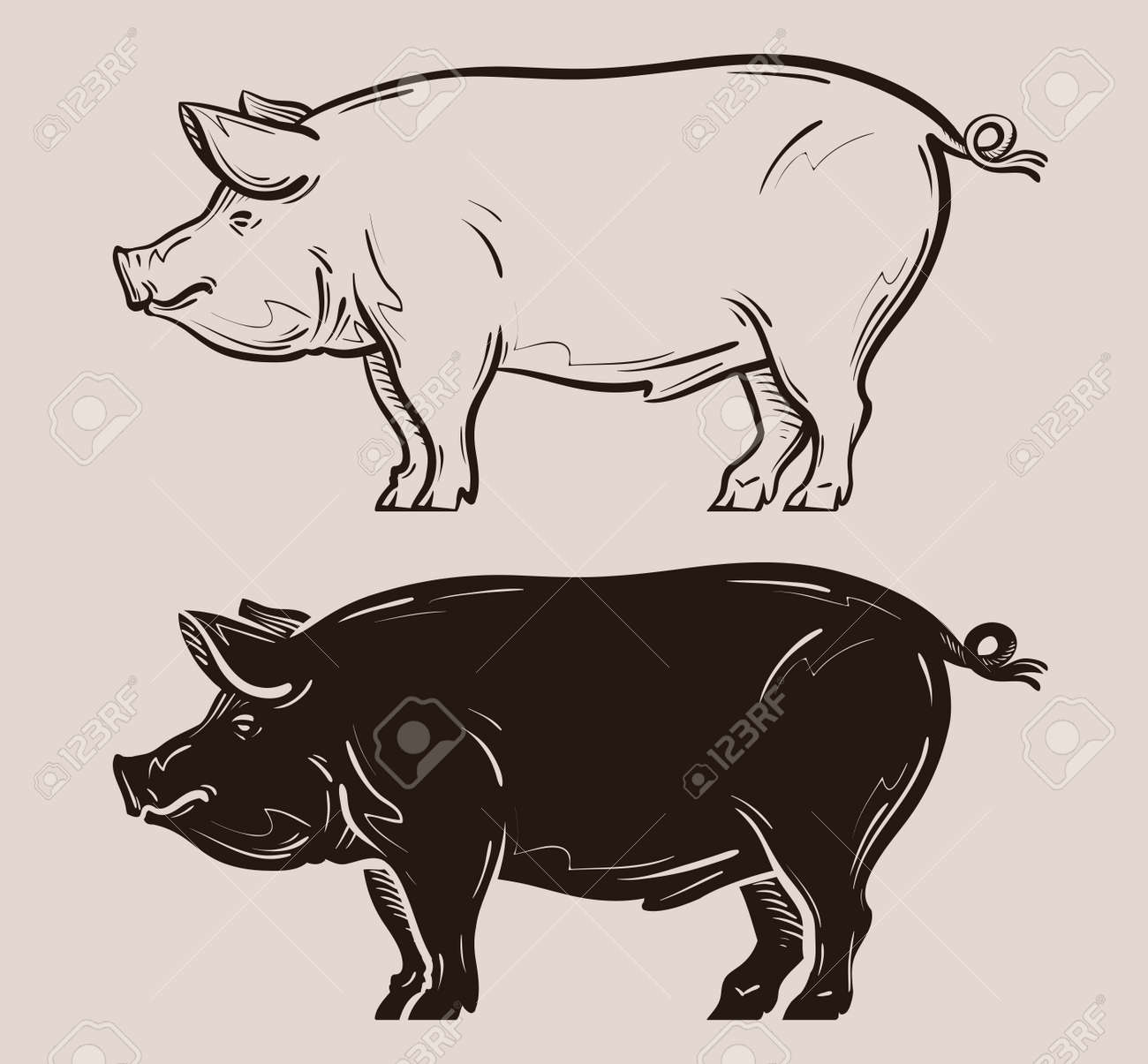 pig vector farm pork or piggy icon royalty free cliparts vectors rh 123rf com pig vector free pig vector art