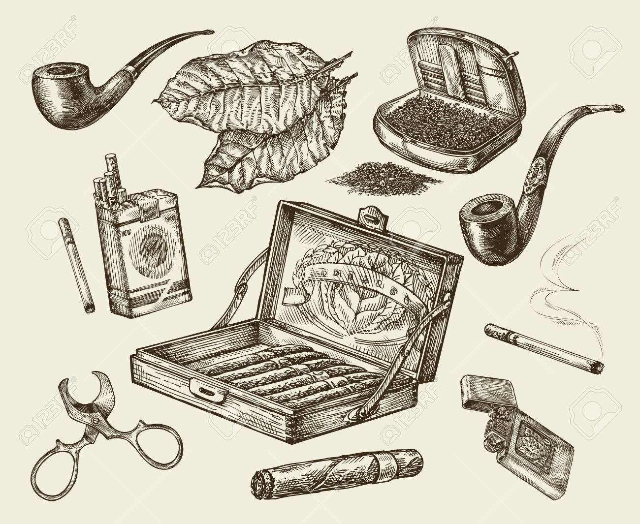 Tobacco. Vector collection smoking. Hand drawn sketch pack of cigarettes, lignter, smoking pipe, cigar, tobacco leaf, cigarette case - 62204981