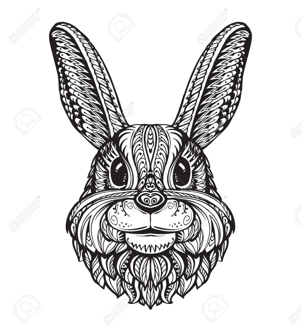 Kaninchen Oder Hase Kopf Isoliert Auf Weißem Hintergrund