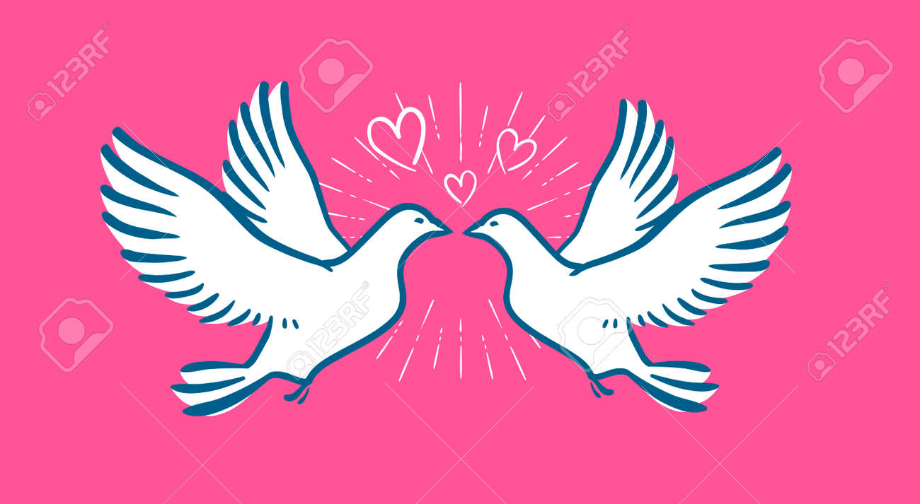 White Dove Flying. Wedding, Love Symbol. Valentine Day Banner Stock Vector    67209553