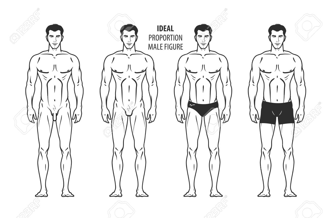 Ideal Proportion Male Figure Hand Drawn Outline Man In Full