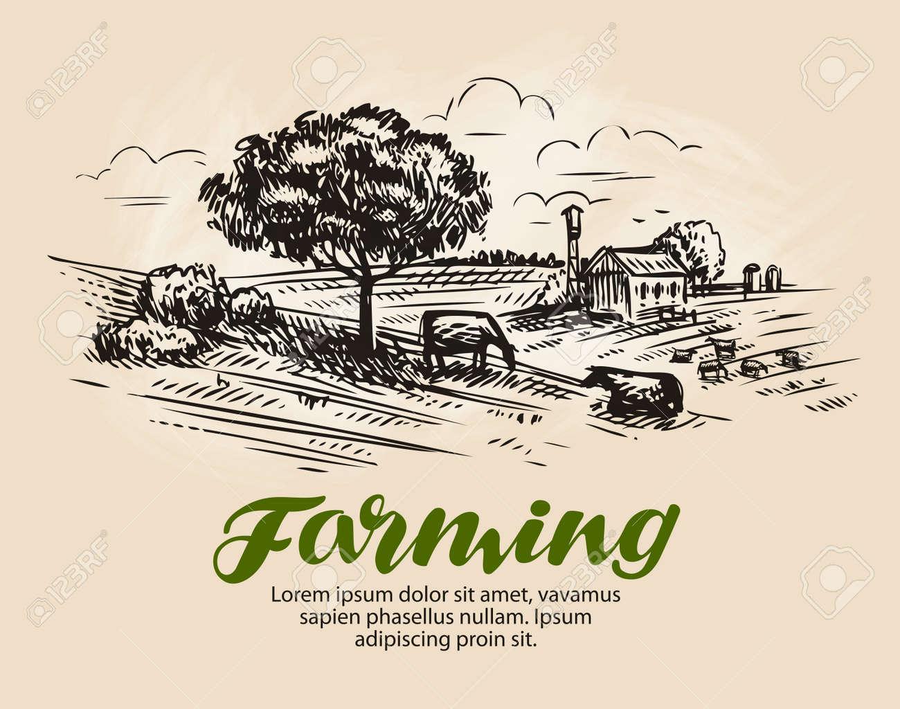 Farm sketch. - 71452287
