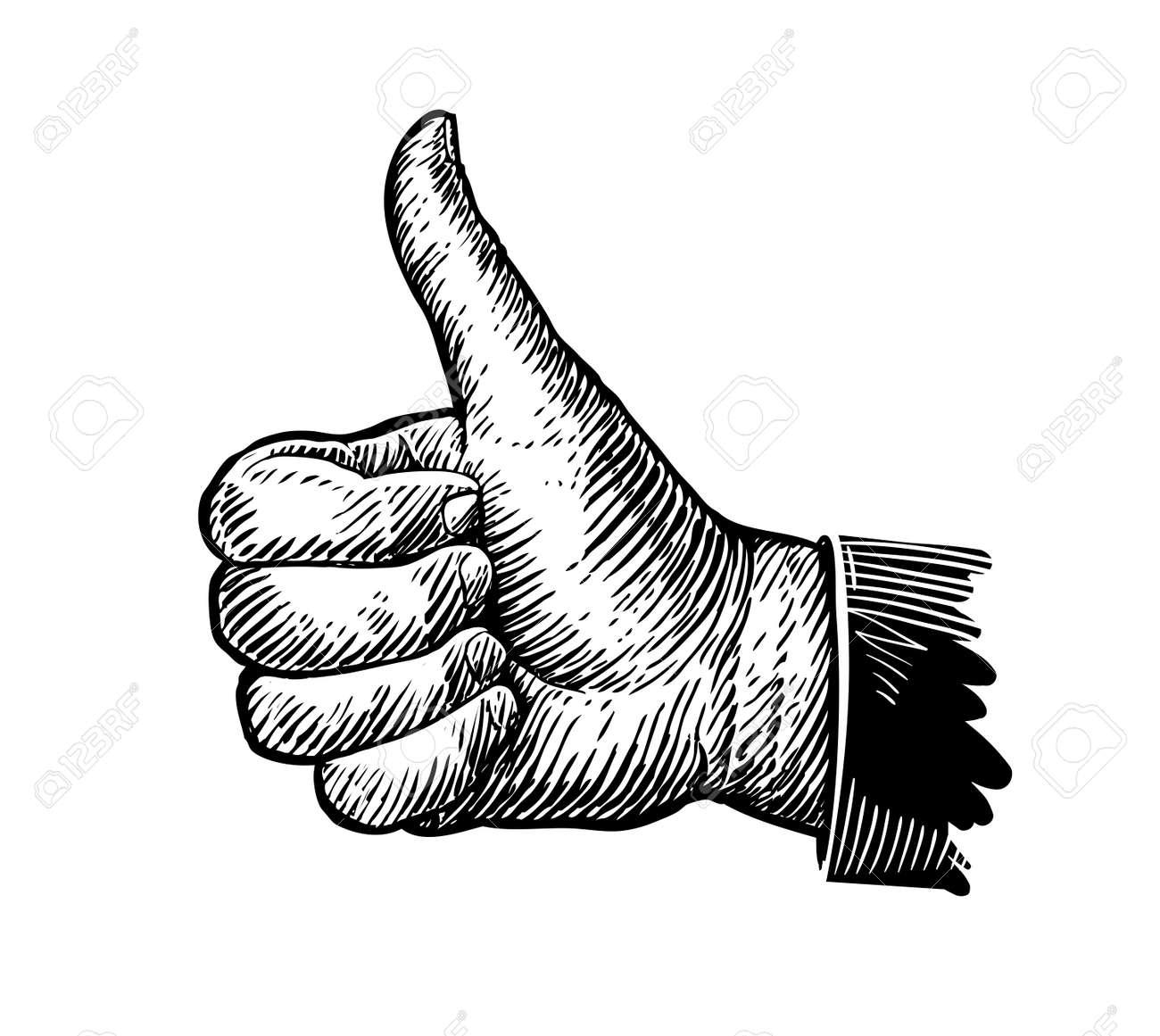 Symbol thumb up. Hand gesture sketch. Vector illustration - 71581144