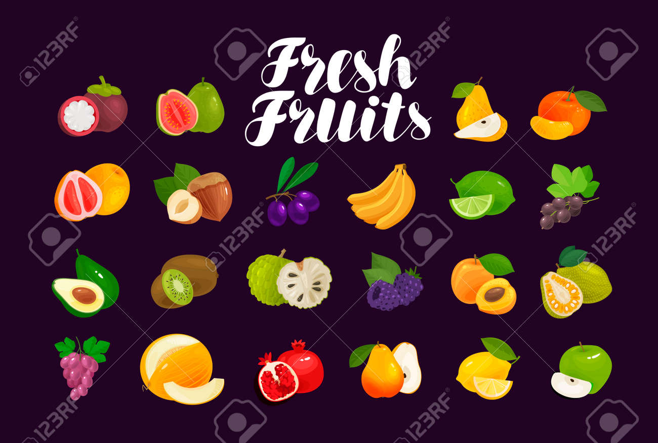 Fruits and berries, set of icons. Food, greengrocery, farm concept. Vector illustration - 101090516