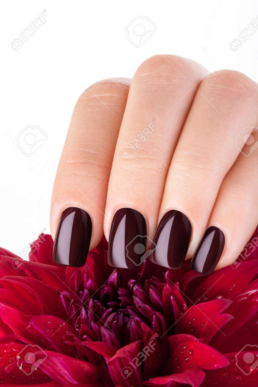 Fabelhaft Schöne Nägel Bilder Referenz Von Schöne Nägel Und Blume Close-up, Tolle Ideen