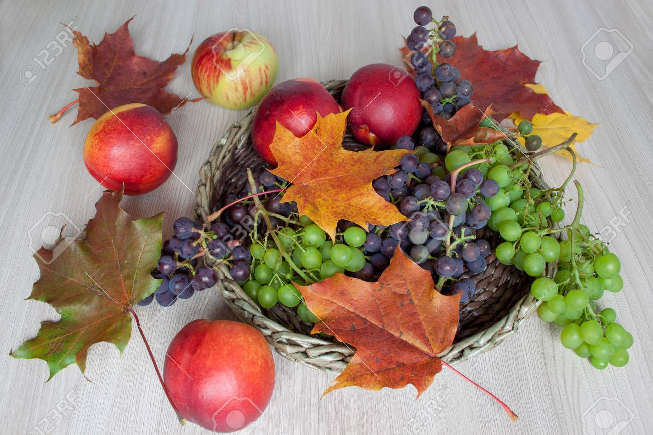 Maple Leafs Nectarine Grapes And Other Gifts Of Nature Autumn Stock Photo Picture And Royalty Free Image Image 92541454