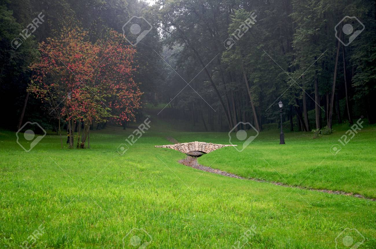 Autumn tree with red leaves and stone bridge in rainy park landscape Stock Photo - 4141018
