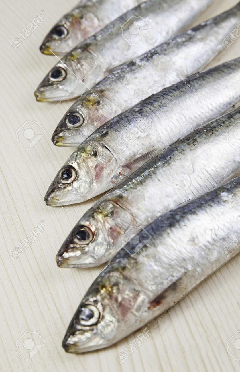 Heads raw sardines, detail of fresh raw fish, healthy food, no fat diet Stock Photo - 18094432