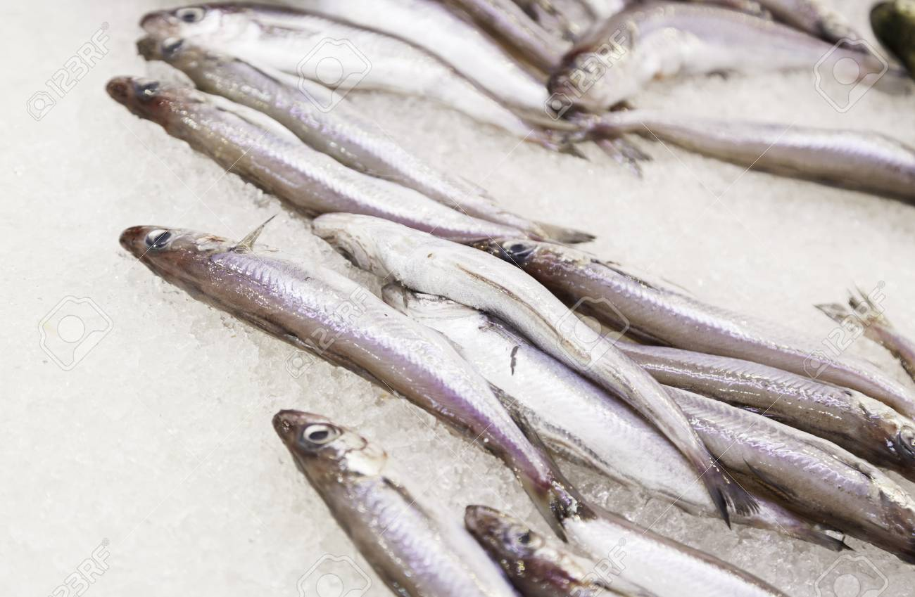 Sardines in a fish market, fresh fish detail on a crazy store, selling fish Stock Photo - 22653406