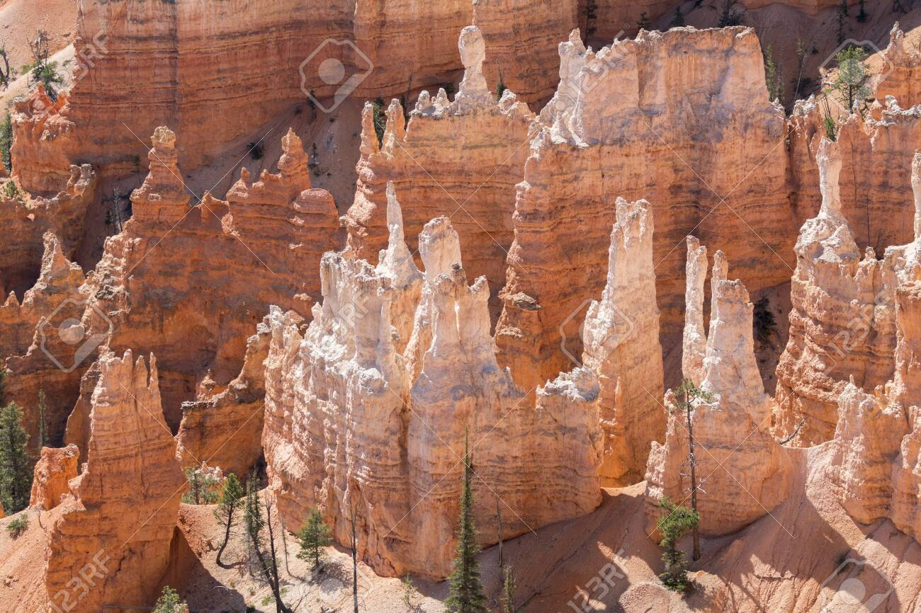 landscape on the bryce canyon in the united states of america - 124275045