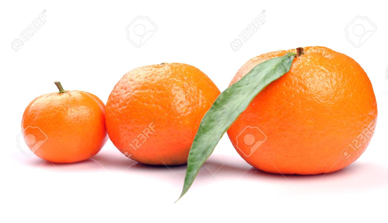 three tangerines on a white background Stock Photo - 6209476