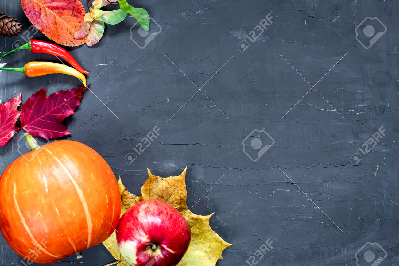 Harvest or Thanksgiving background with autumn fruits and gourds on rustic wooden table - 169789088