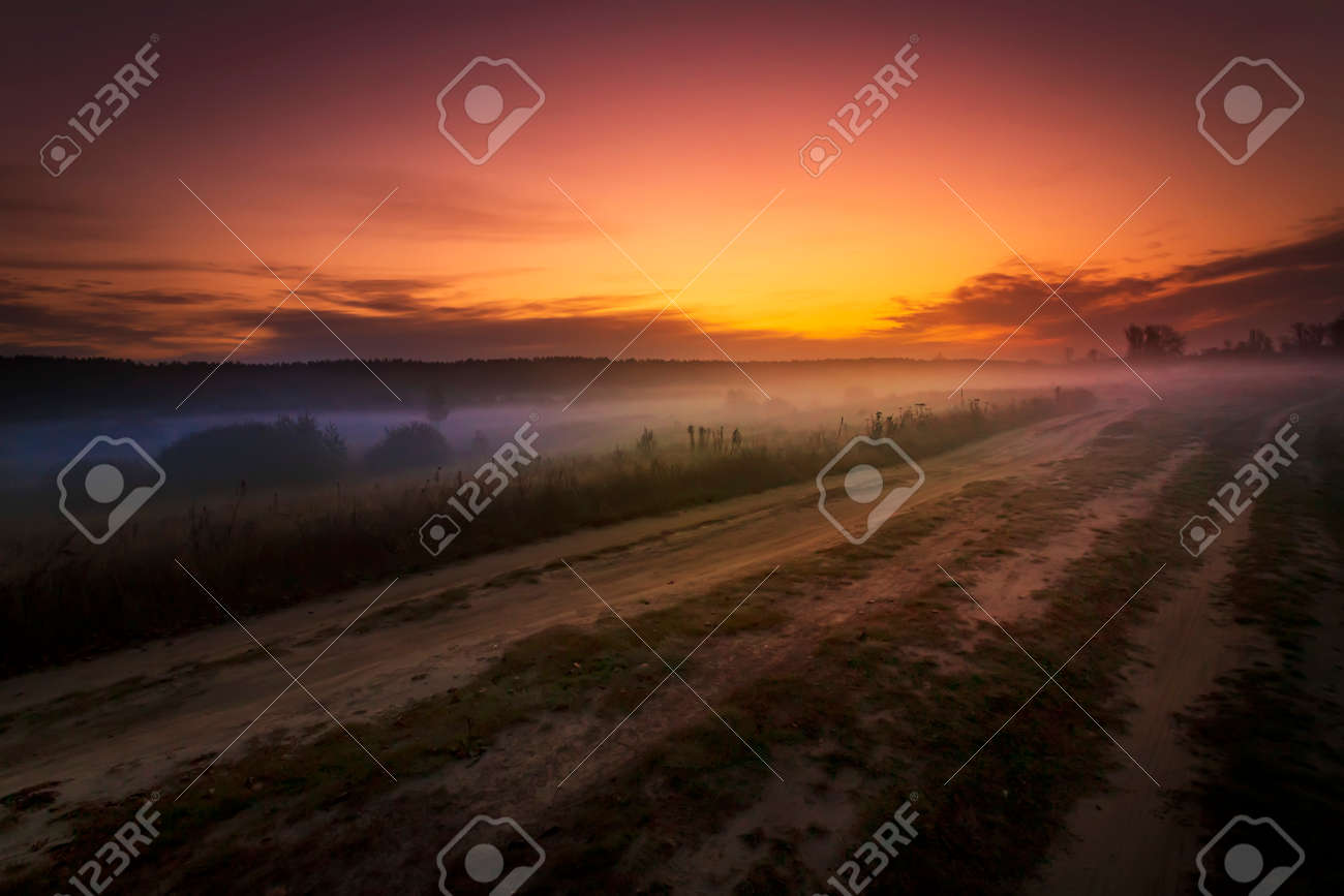 Summer landscape with flower meadow and majestic clouds in the sky on sunrise. Summer morning - 169789093