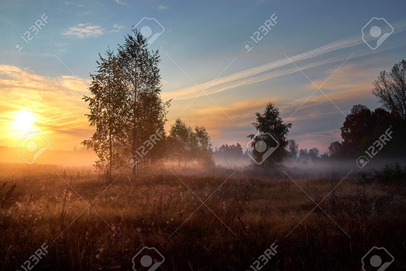 Autumn golden sunrise. Autumn in Russia. Sunny day. - 169789117