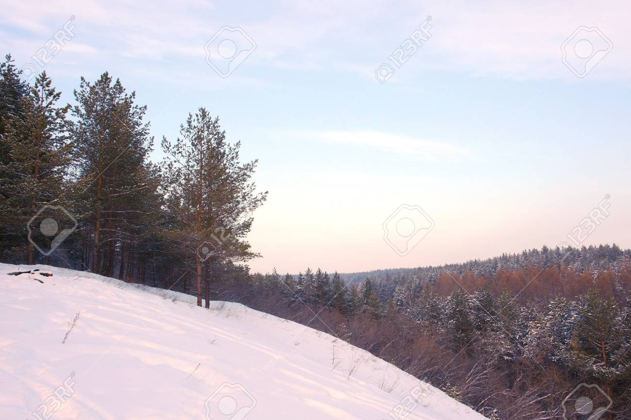Evening winter landscape in forest with pines on the mountains Stock Photo - 18131997