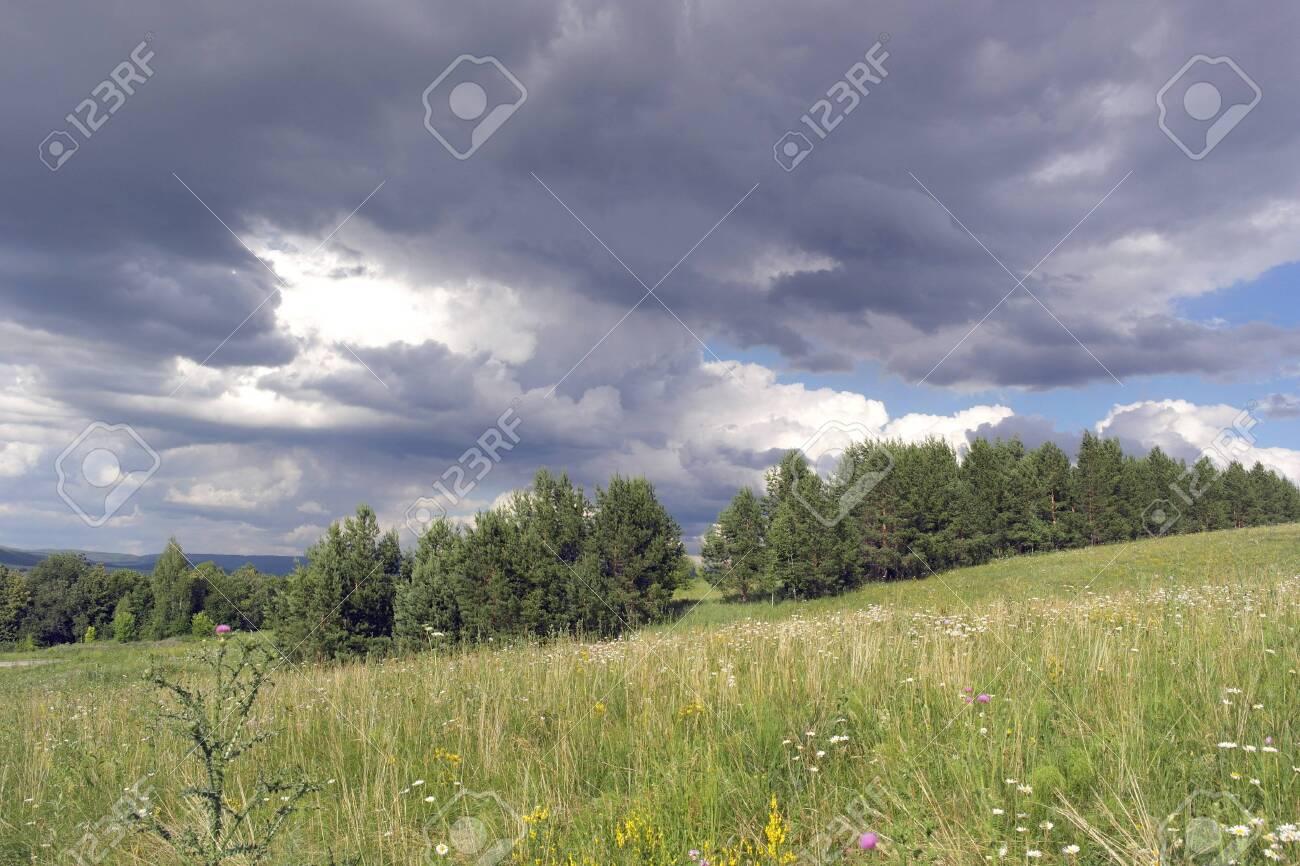 Beautiful summer landscape Stock Photo - 30180149
