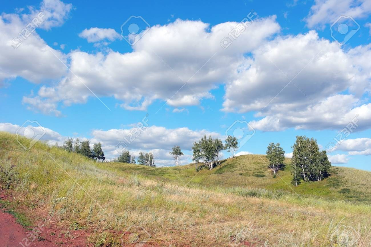 Beautiful summer landscape with birches on the hill Stock Photo - 33196578