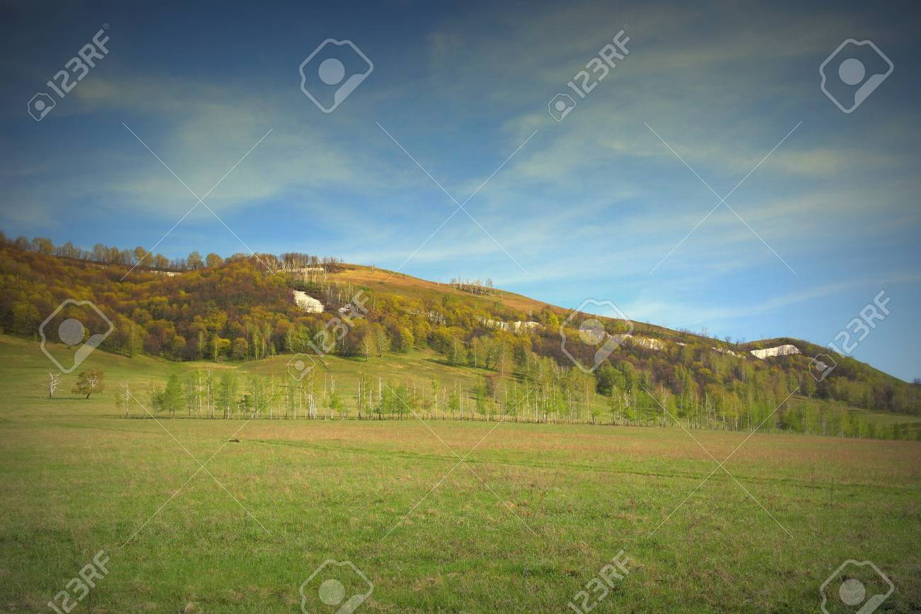 Spring landscape with forest on the mountain Stock Photo - 35231715