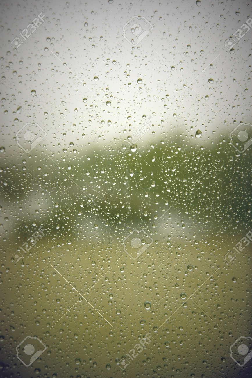 Drops of rain on the window (glass). Shallow DOF Stock Photo - 55213316