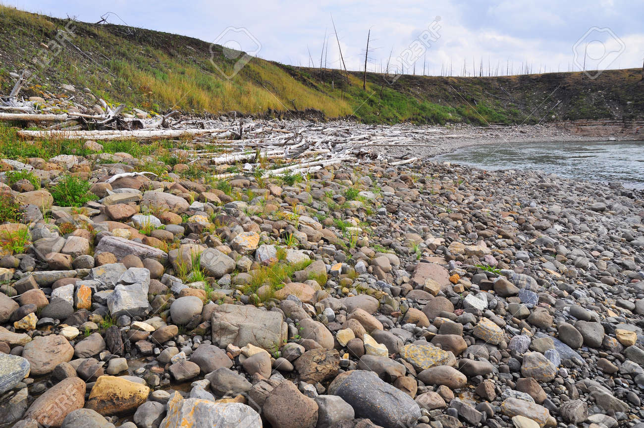 Pebbles and cobbles on the banks of the river  River landscape