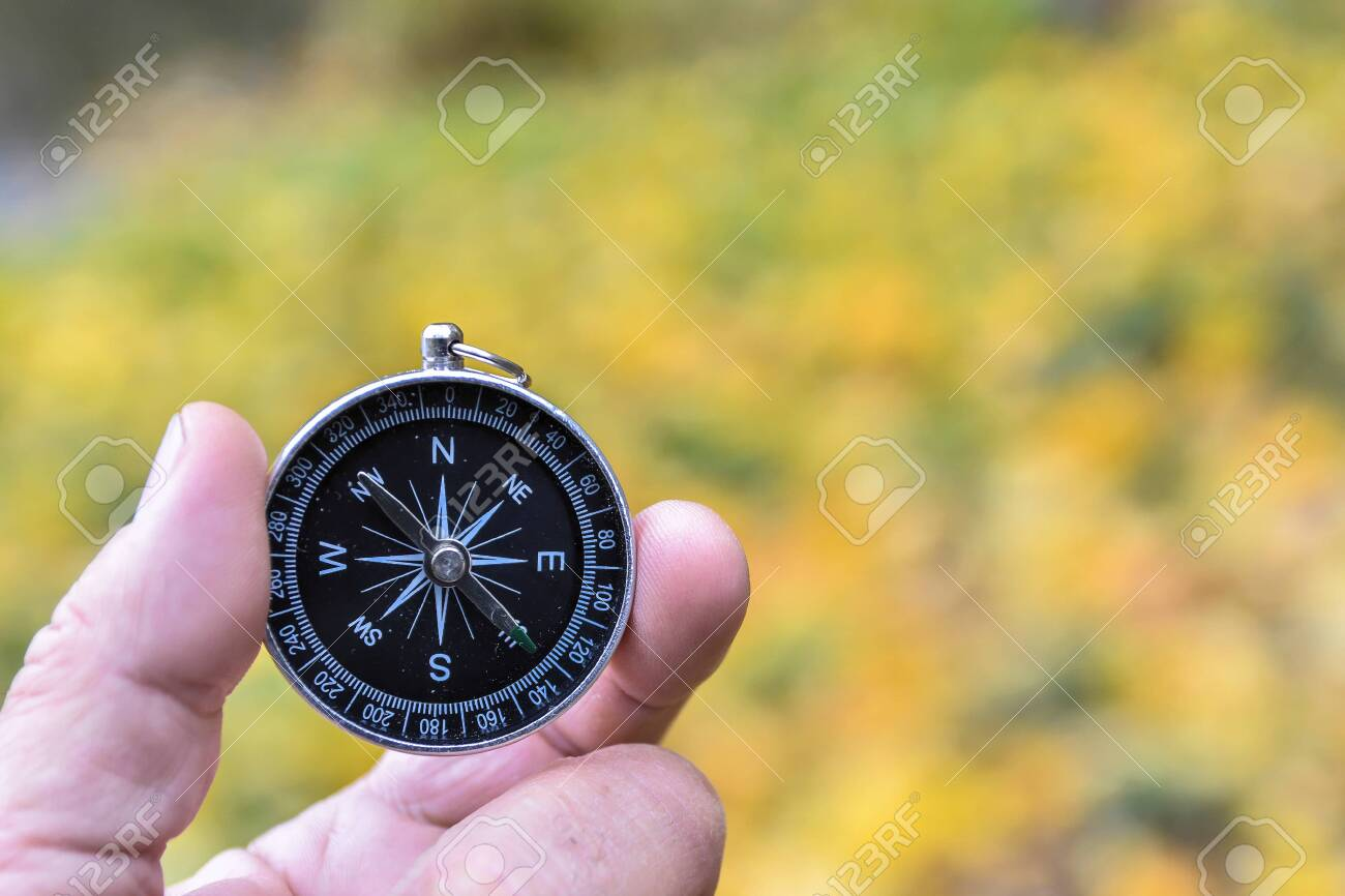 Compass orientation. Compass in hand against the background of nature. - 147725790