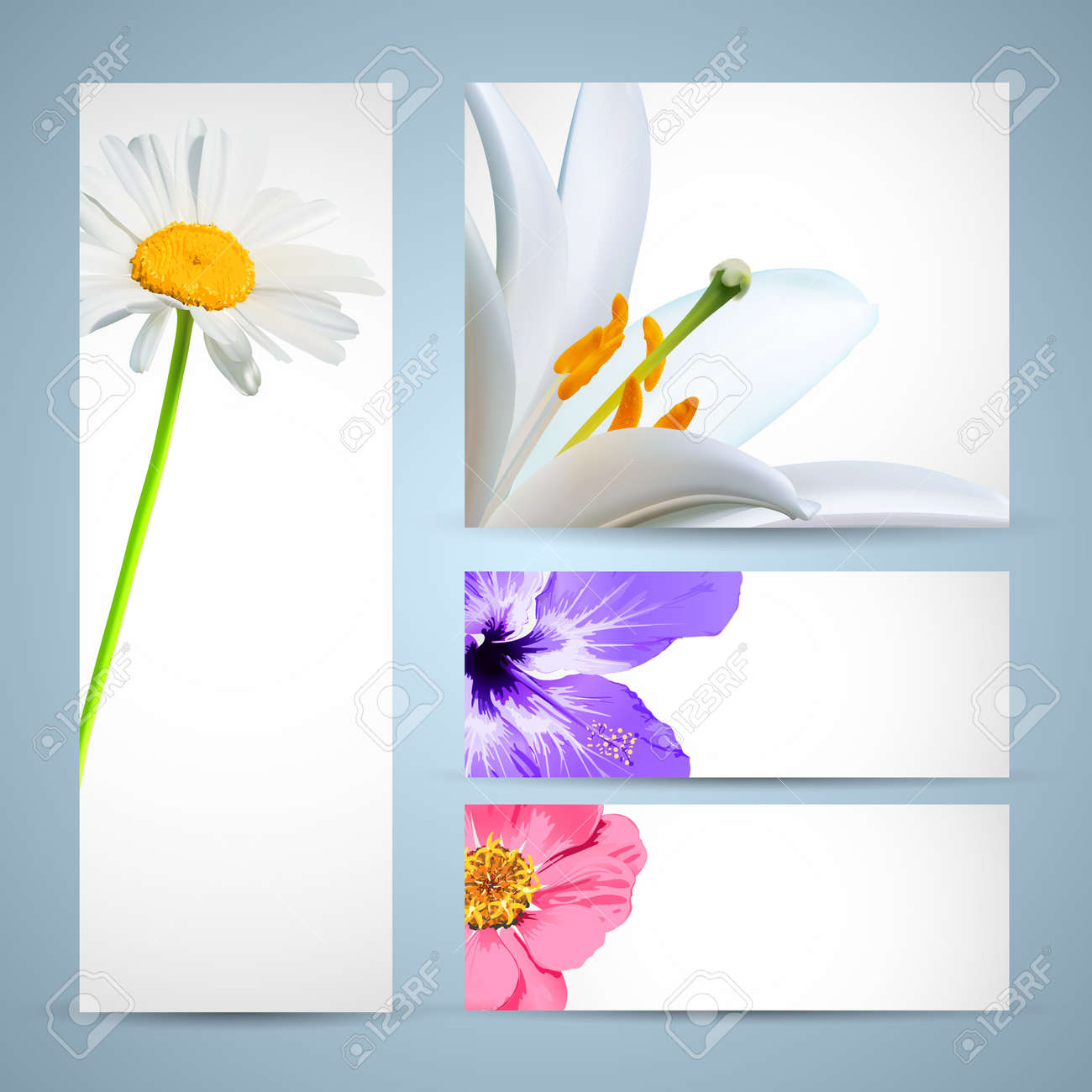 flower brochure template background design royalty free cliparts