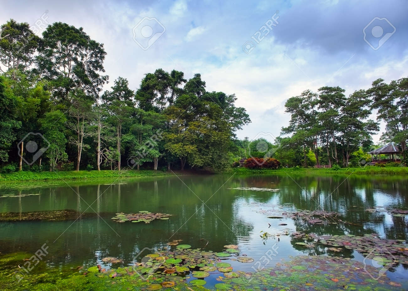 Background image location - Natural Background Of Pond And Trees Beautiful Outdoors Location Stock Photo 15385892