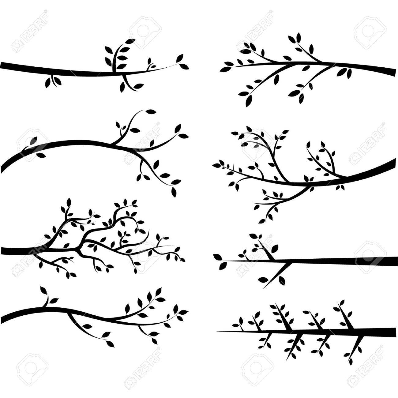 Branch Silhouettes - 41772843