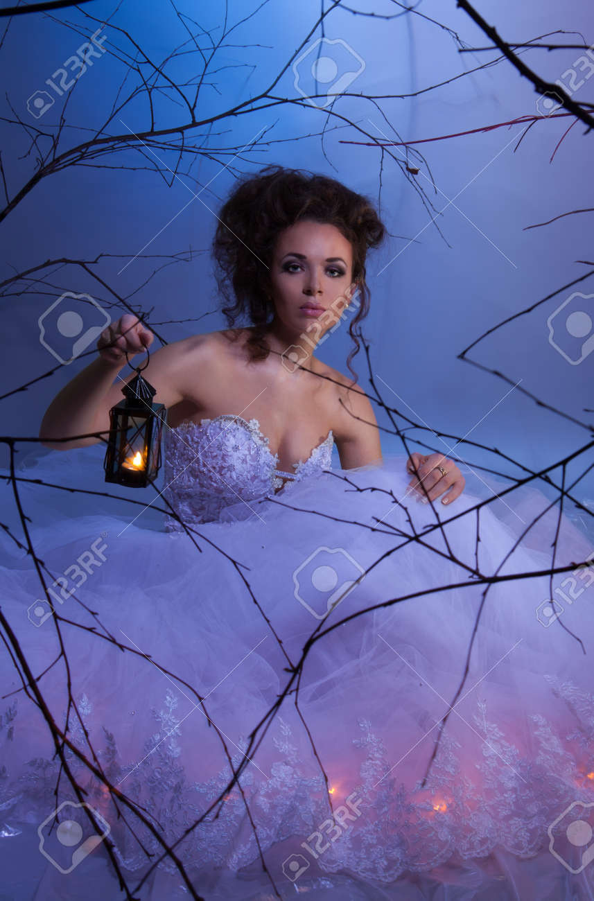 Bride sitting in wedding dress with lamp in fairytale forest at winter, like in a dream, shoot with both continuous and instant flash light made with professional makeup artist and hairdresser Stock Photo - 9101018