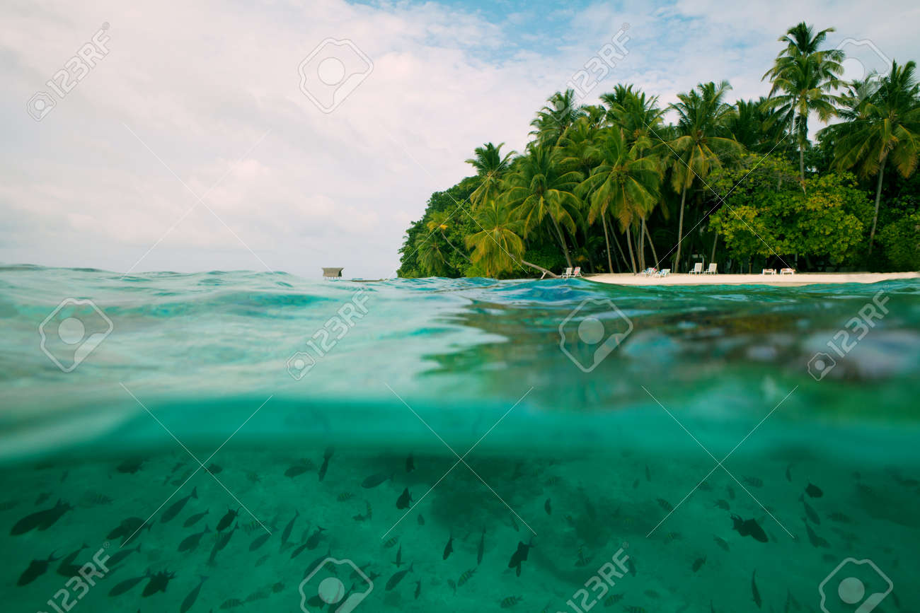 Tropical island - the half underwater view with sea bed Stock Photo - 11753784