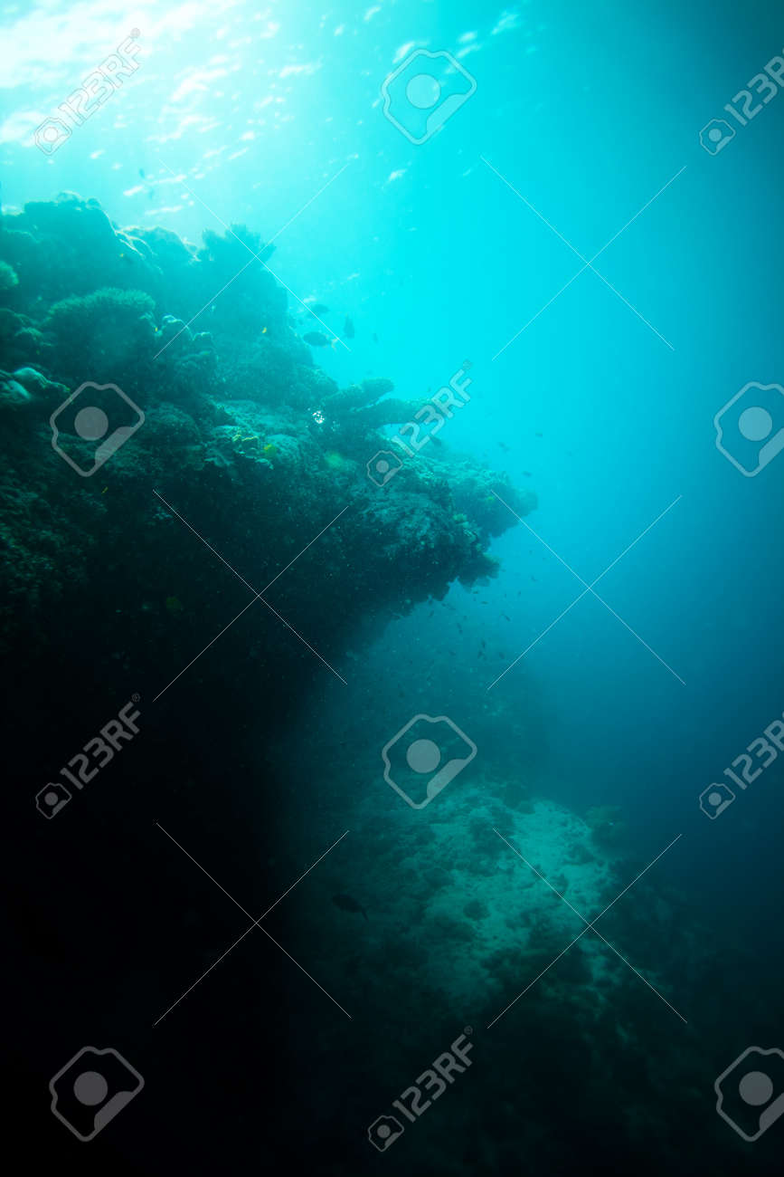Edge of the deep water on coral reef Stock Photo - 11749566