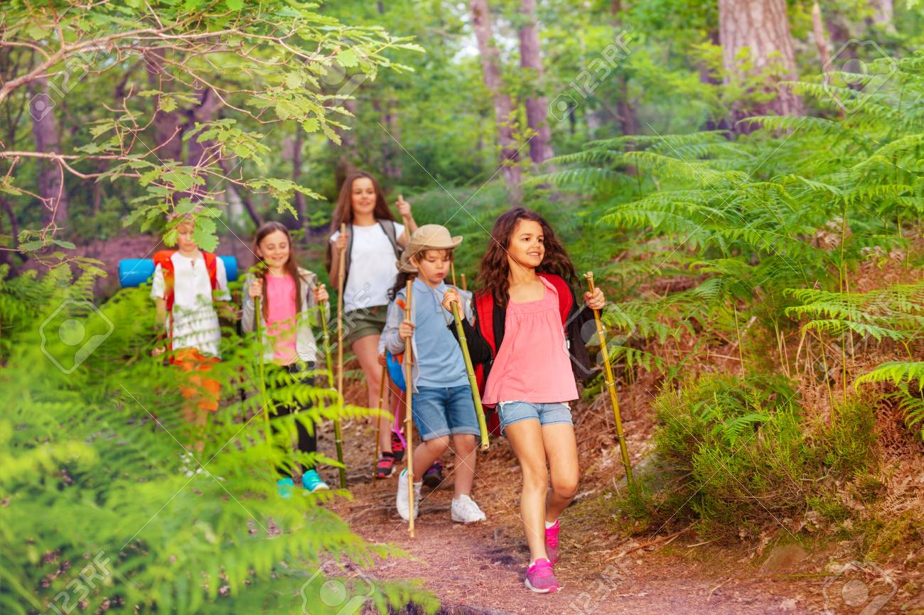 Group of kids walking in the forest on school summer activity one after another with backpacks - 107812645