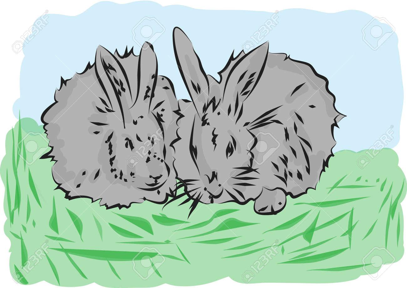 rabbits Stock Vector - 17644027