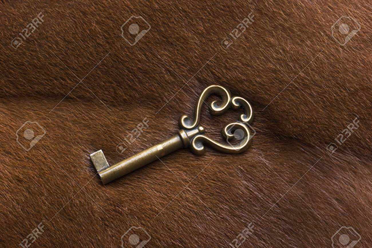 old key on the background of fur Stock Photo - 7494657