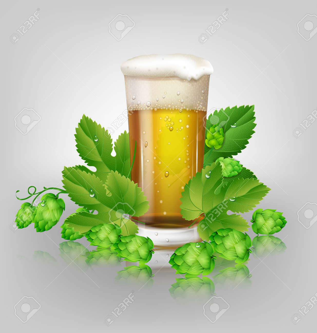 glass of beer and hops Stock Vector - 22474588
