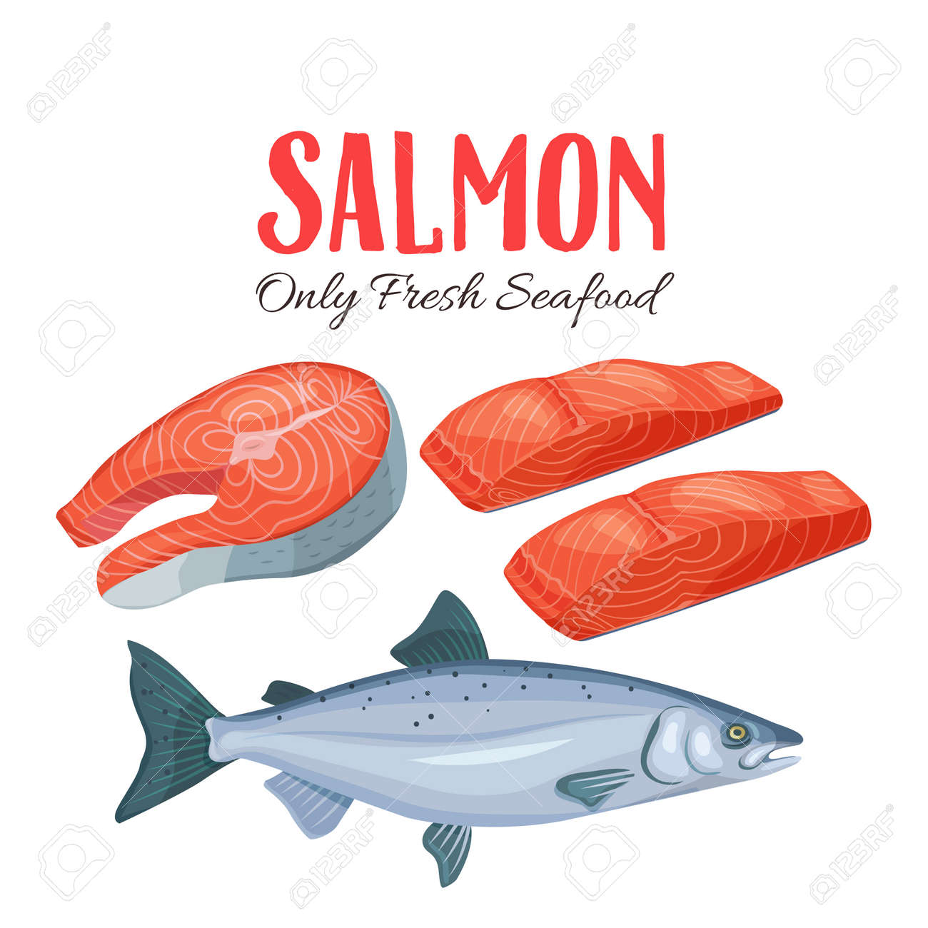 Set Salmon Vector Illustration. Fillet, Steak And Fish Salmon ...