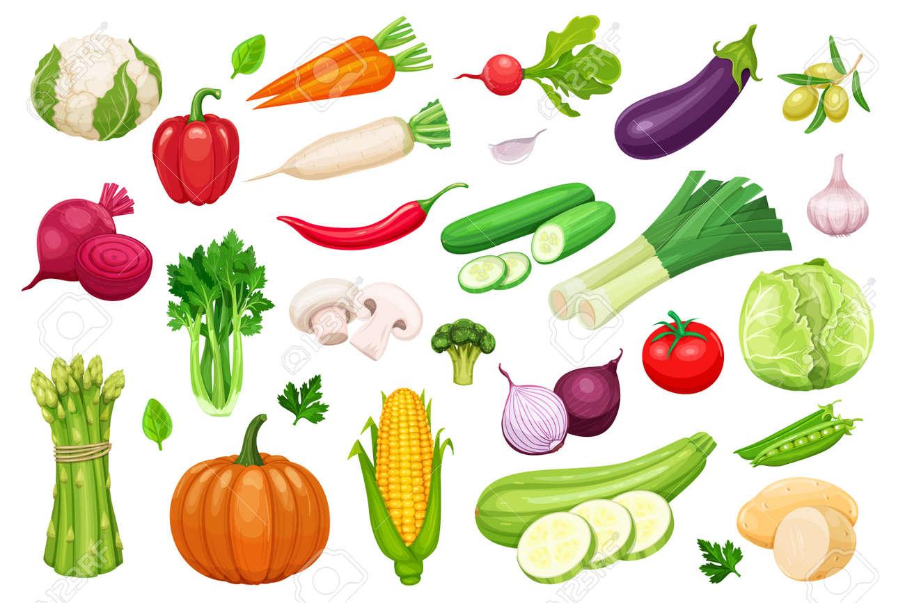 Iconos De Verduras De Vectores Establecidos En Estilo De Dibujos Animados Producto Agrícola De La Colección Para El Menú Del Restaurante Etiqueta