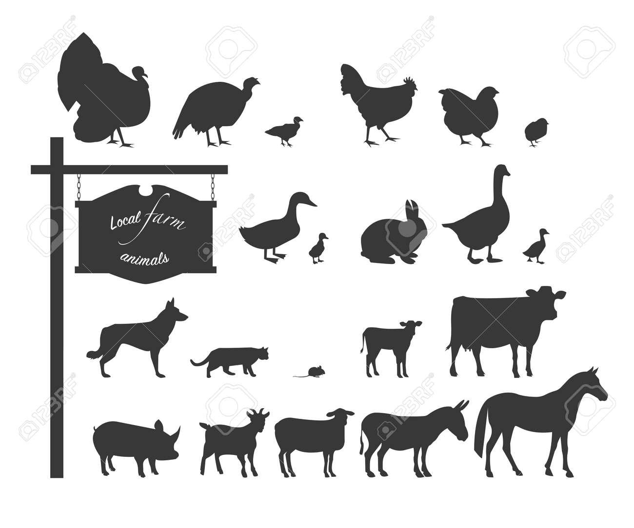 国内の動物や鳥。白の背景に黒のシルエット。イラスト。 ロイヤリティ