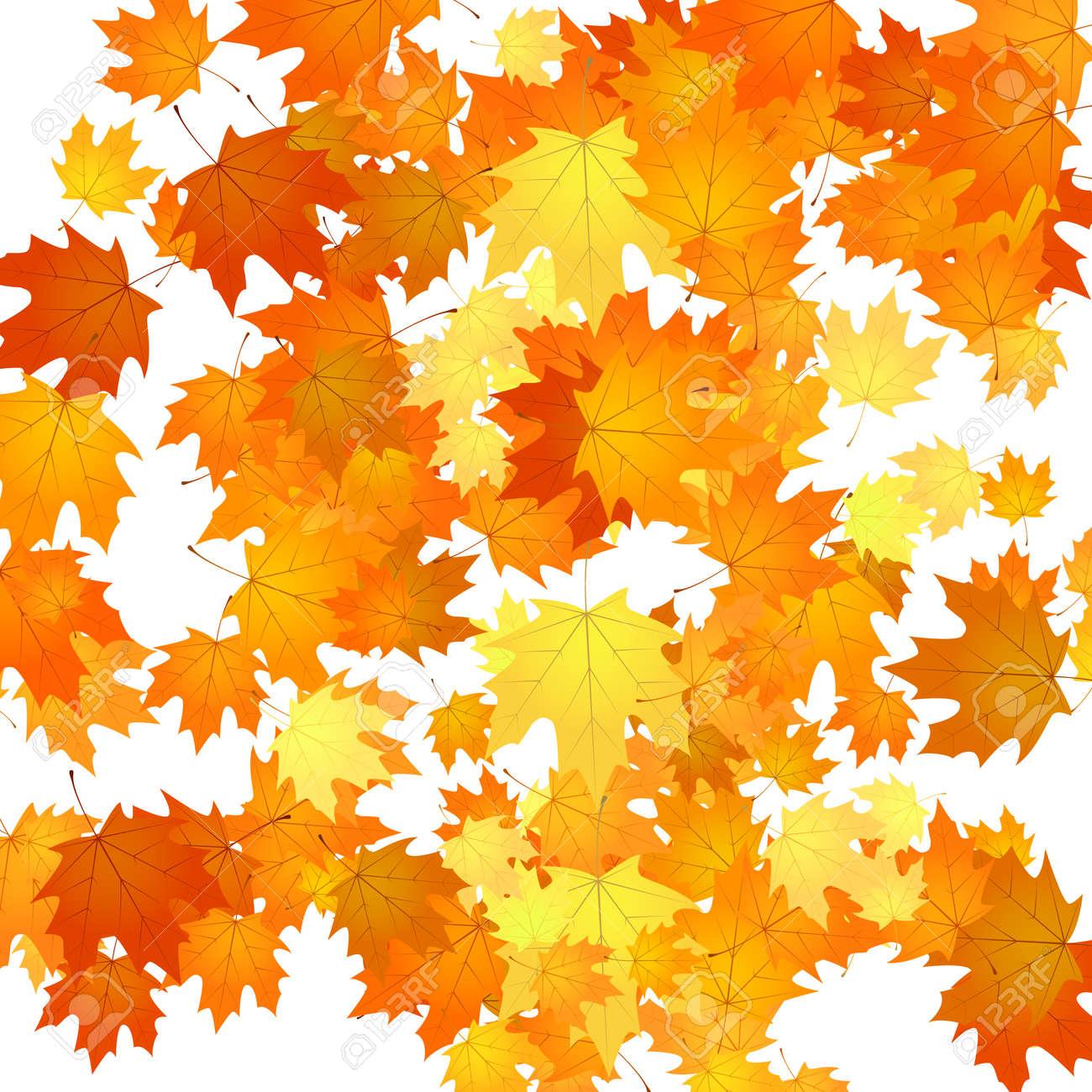 自然花の背景紅葉秋背景イラストのイラスト素材ベクタ Image 87349128