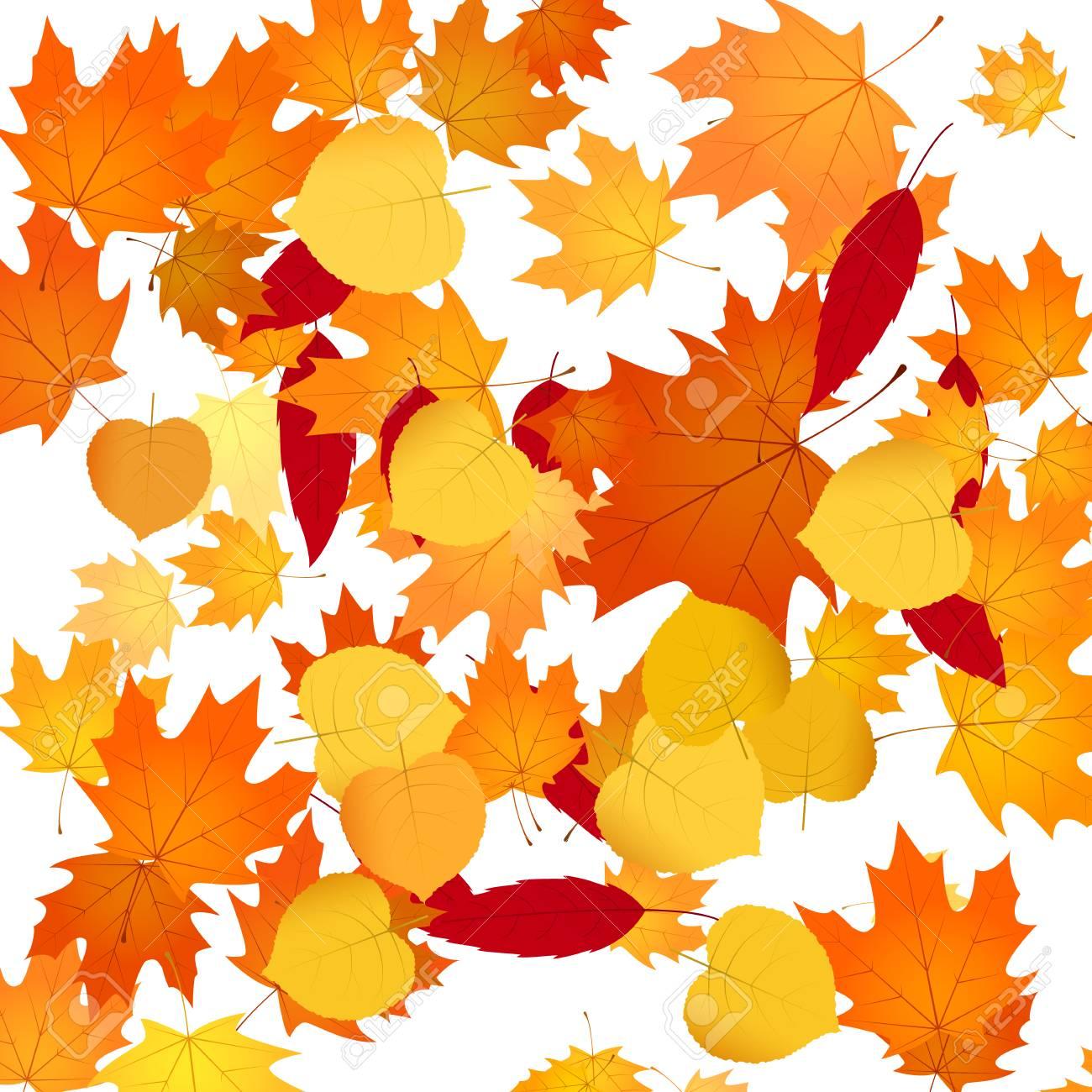 自然花の背景紅葉秋背景イラストのイラスト素材ベクタ Image 87431916