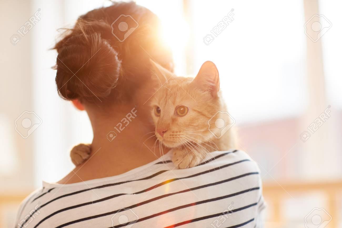 Ginger Cat Embracing Owner - 120890642
