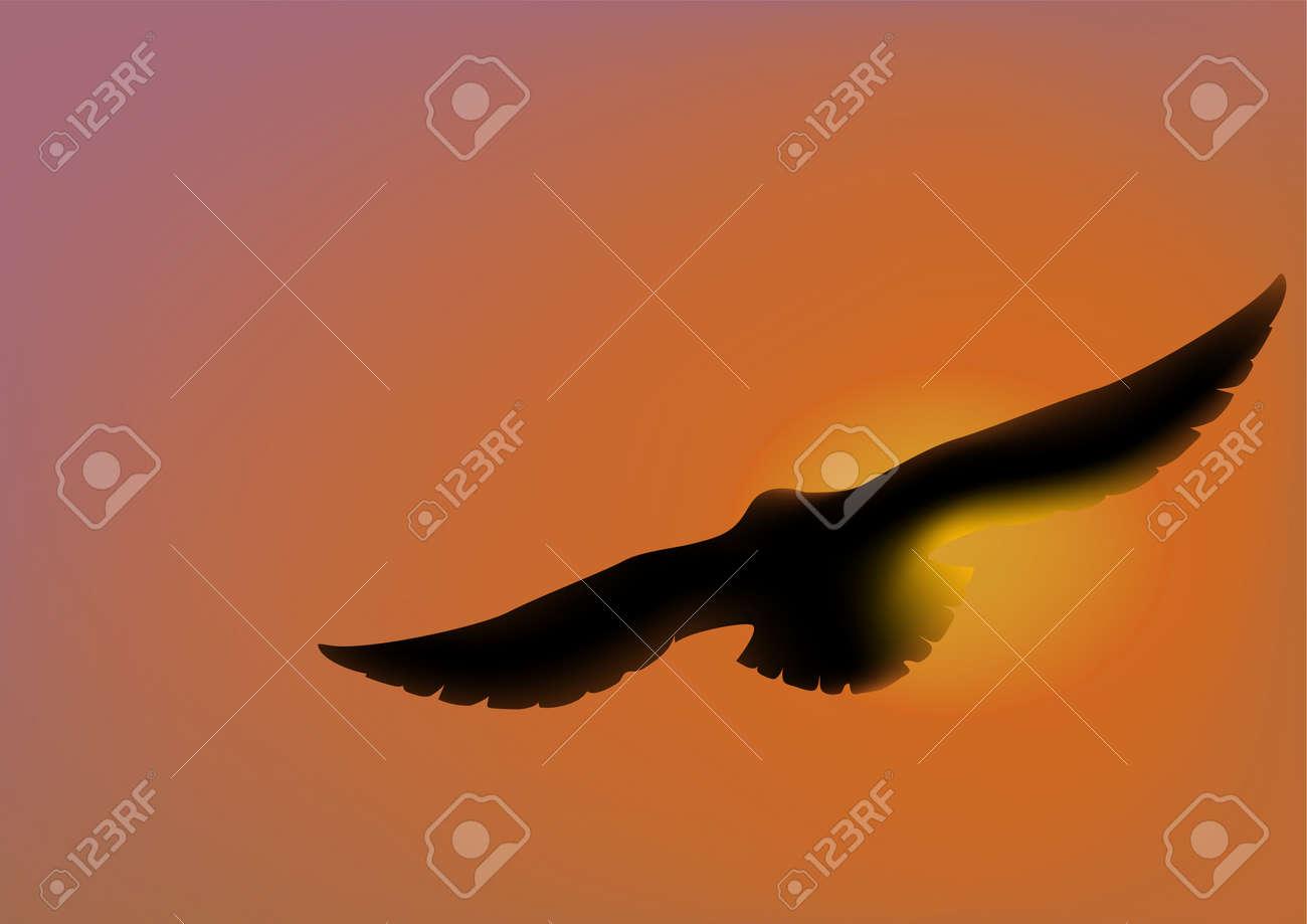 Sun eagle - 38156310