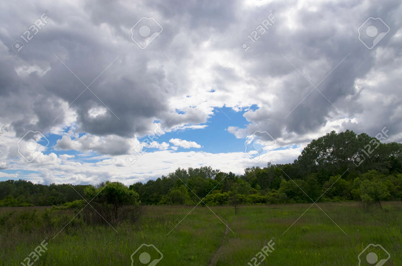 Landscape of a forest glade under the sky with clouds - 158440163