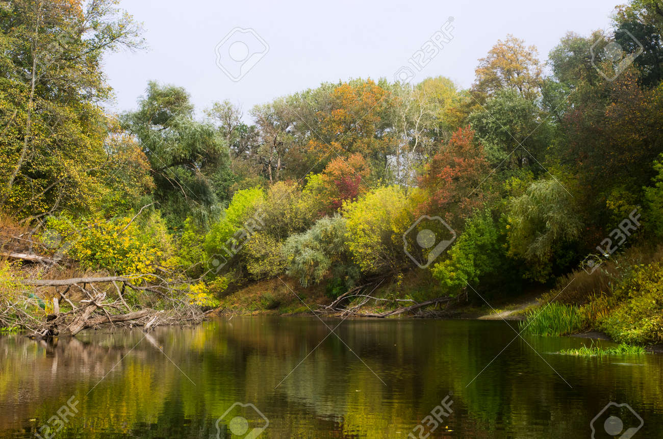 Autumn forest landscape along the banks of the river - 158581713